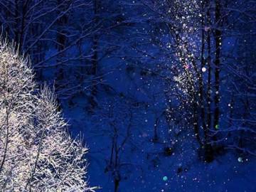 Lặng ngắm không gian núi đồi Hokkaido chìm đắm trong bụi kim cương