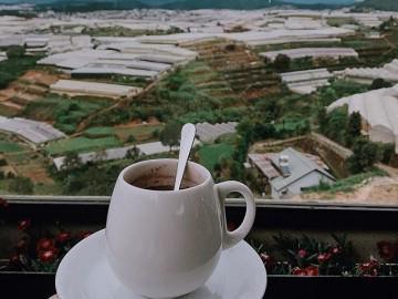 5 quán café đẹp đến ngẩn ngơ cho bạn ôm trọn Đà Lạt