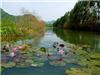 """Không phải mùa lễ hội, đến chùa Hương tháng 10 mới là """"cực phẩm"""""""