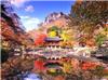 Kinh nghiệm 5 ngày ăn chơi 'thả ga' ở Hàn Quốc, tha hồ sống ảo với loạt ảnh siêu đẹp