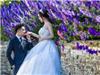 Yêu thầm ở Việt Nam, hẹn cô gái sang Nhật tỏ tình, chàng trai nhận cái kết không ngờ
