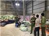 Bỉm trẻ em Trung Quốc đội lốt nhãn hiệu Boppy, mua vào 51 nghìn đồng, bán ra 215 nghìn đồng